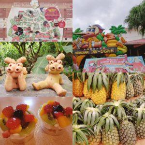 OKINAWAフルーツらんどの地図やパイナップルなど