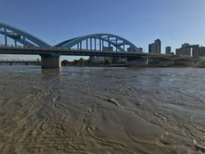 多摩川 台風後 増水